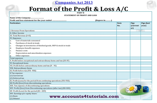 balance sheet profit and loss account under companies act 2013