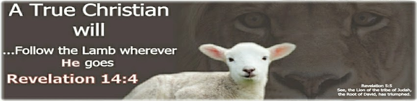 They follow the Lamb wherever He goes