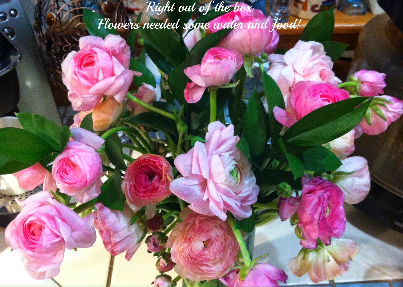 Tickled Pink in the Rain Summertime Flowers The Bouqs Review and Promo Code