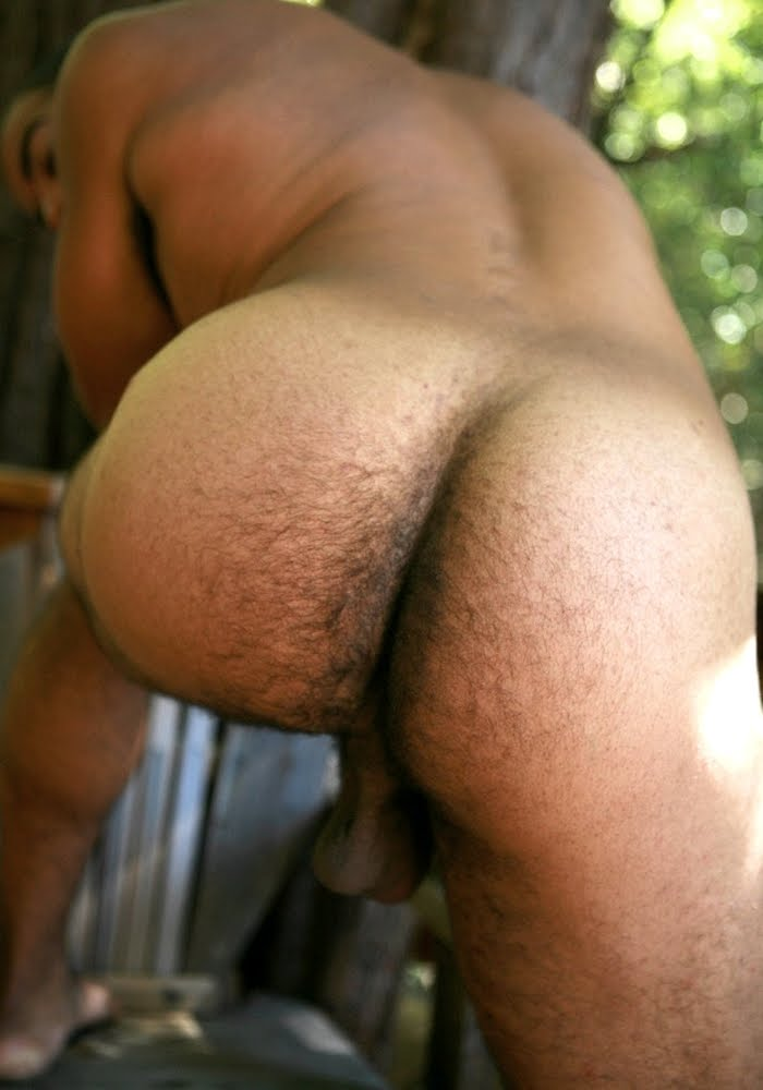 Black hairy butts