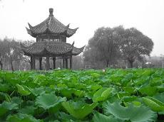 El libro del camino y la virtud - Lao Tse - 13-05-2011