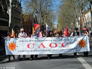 Èxit manifestació per les llengües