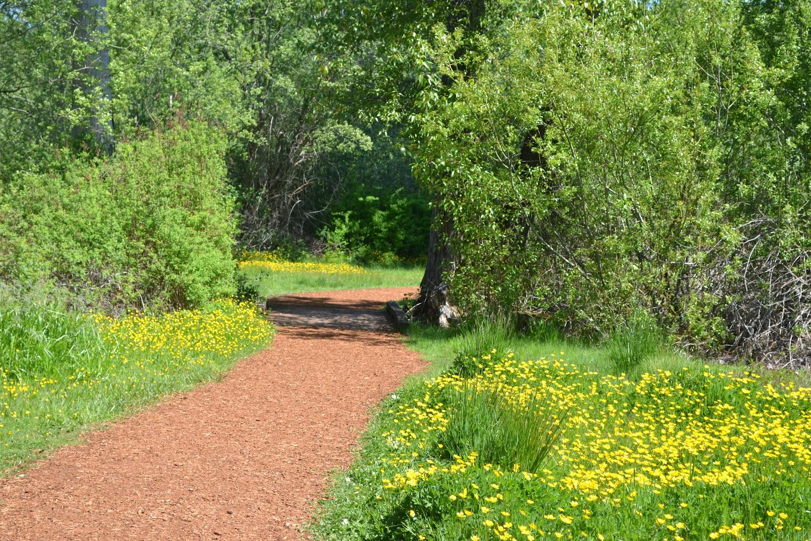 a path worth exploring