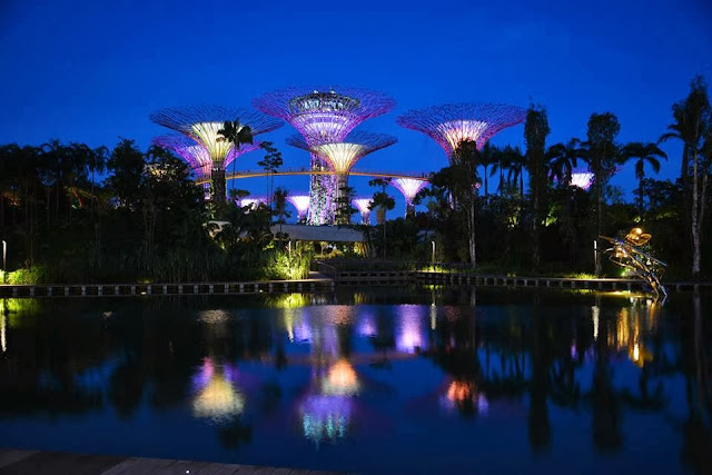 long day ended with these trees that shine with music - Garden By The Bay Music