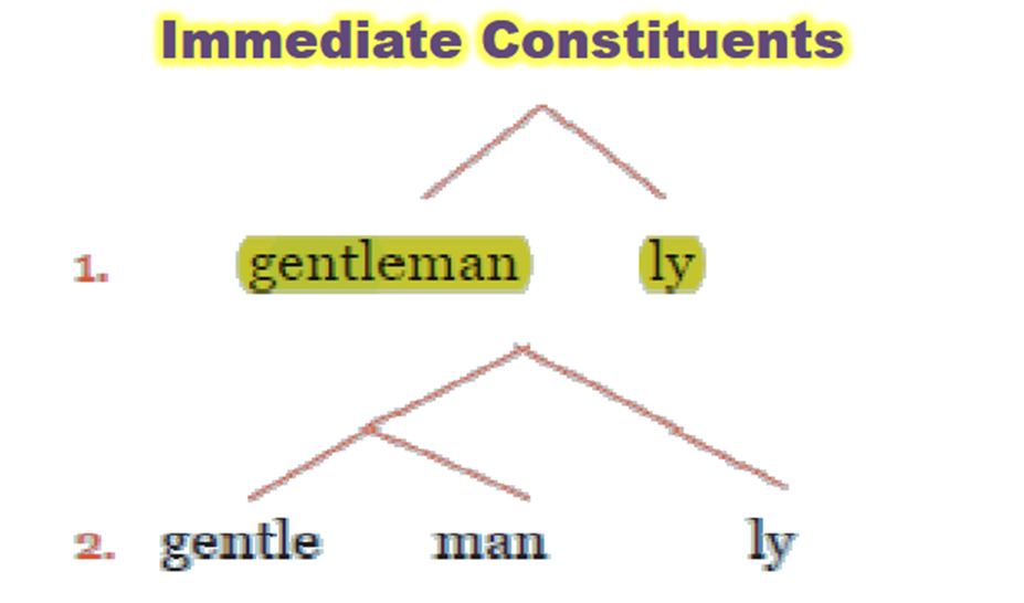 immediate constituents Synonyms for constituent in free thesaurus antonyms for constituent 39 synonyms for constituent: voter, elector, member of the electorate, component, element, ingredient, part, unit.