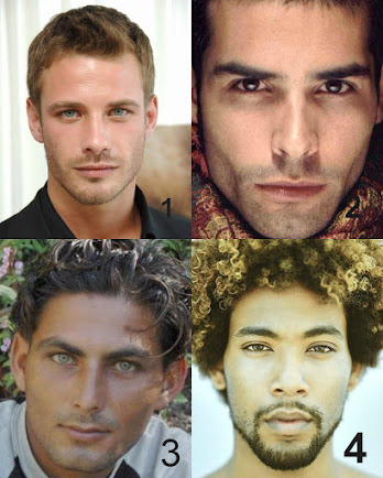 Which is a Perfect Male Face?