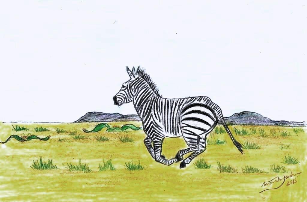 Desenhos de MariaNJardim:  Deserto do Namibe.