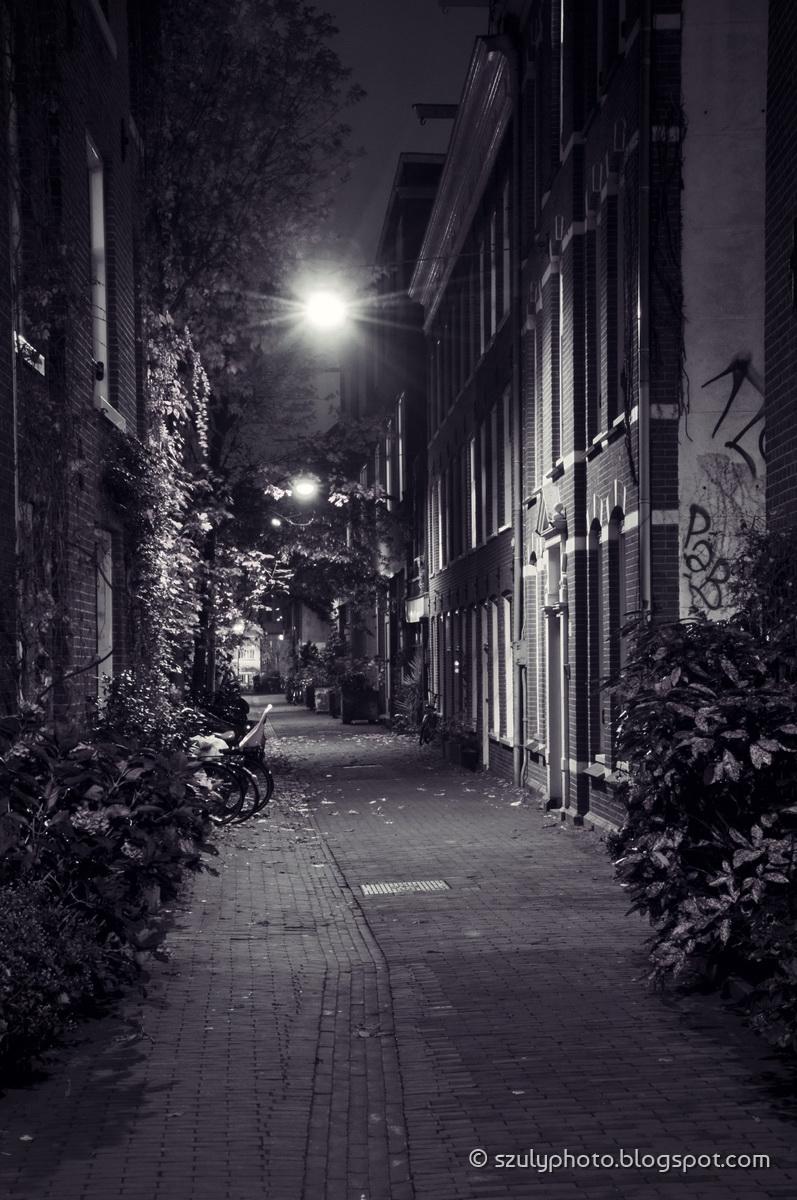 Evening street view in the Jordaan, Amsterdam