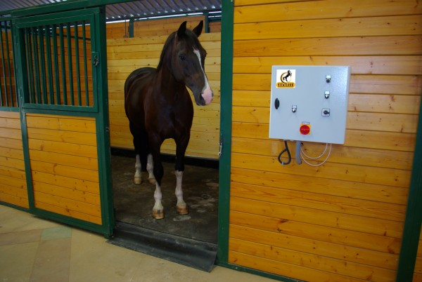 Horse Exerciser, Horse Solariums