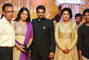 Amala paul vijay reception-thumbnail-35