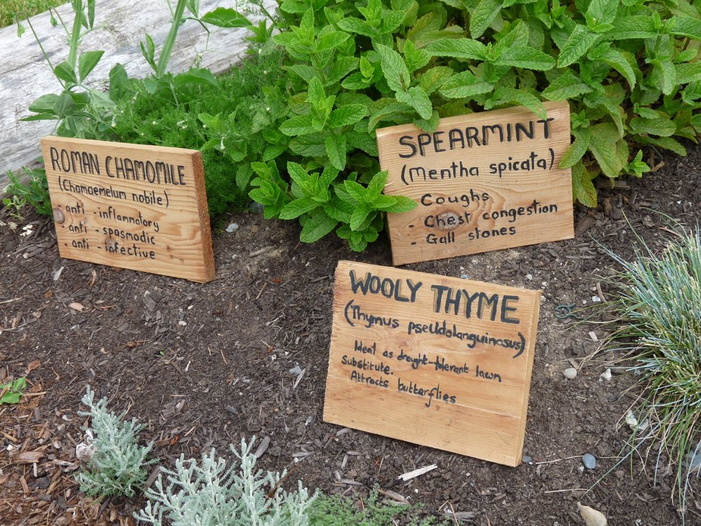 cultural herb garden cultivating connections labeling the garden