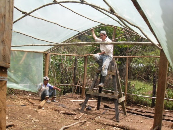 Garden center ejea conformar un invernadero reciclado iv - Como hacer un invernadero pequeno ...