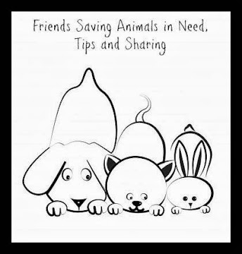 Friends Saving Animals Facebook page