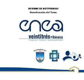 INFORME DE ACTIVIDADES. COORDINACIÓN DEL TEMA-ENEA OAXACA 2011