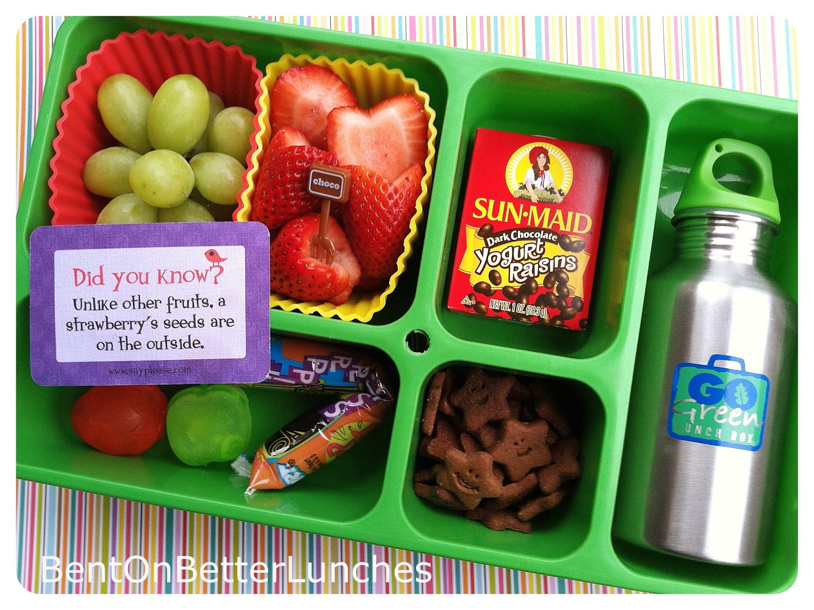 Go Green Lunch Box Kids Choice