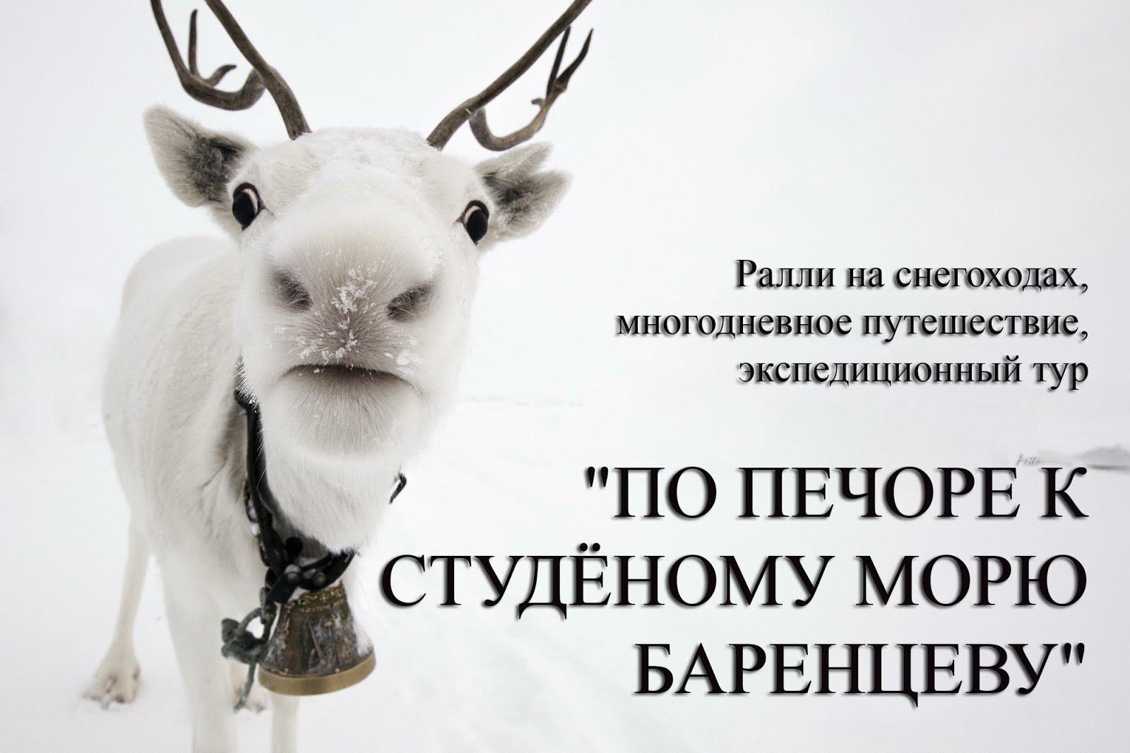ПО ПЕЧОРЕ К СТУДЁНОМУ МОРЮ БАРЕНЦЕВУ