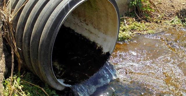 Delitos contra el medio ambiente y Derecho Penal
