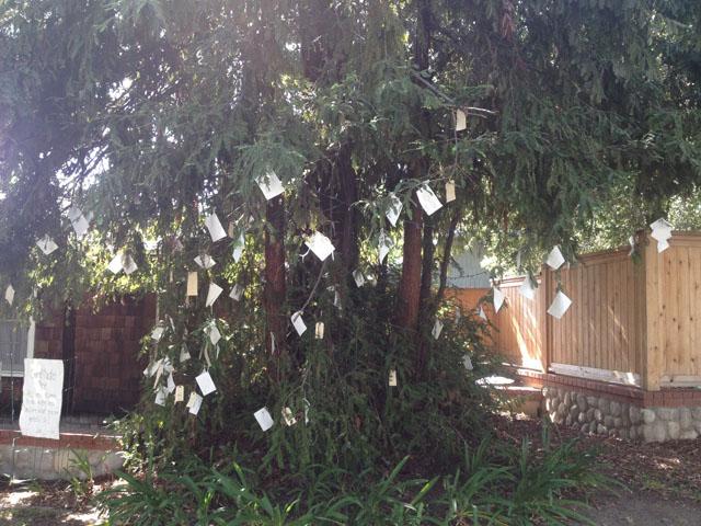 Creating a neighborhood Gratitude Tree