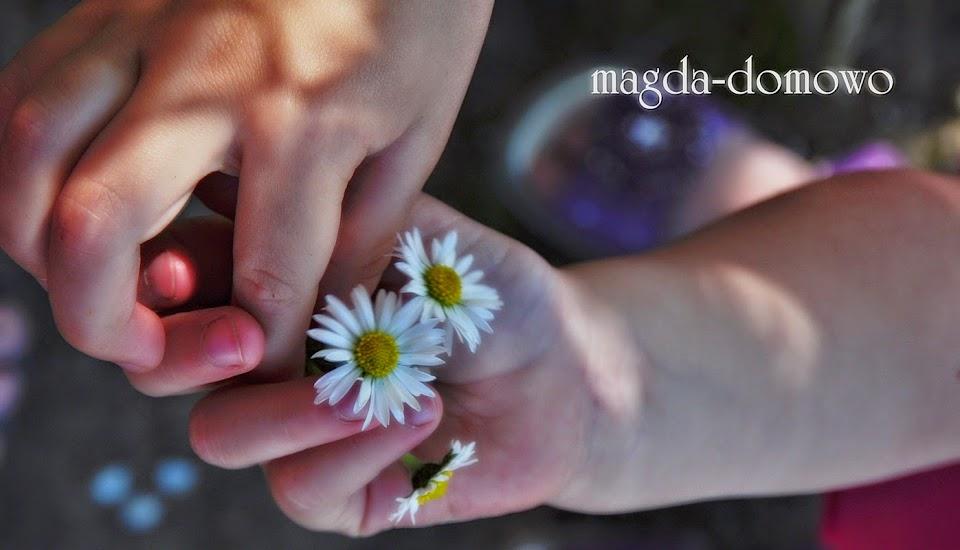 magda-domowo