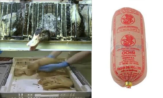 Horror ¿Comes pate o foie gras de higado? Mira como se hace