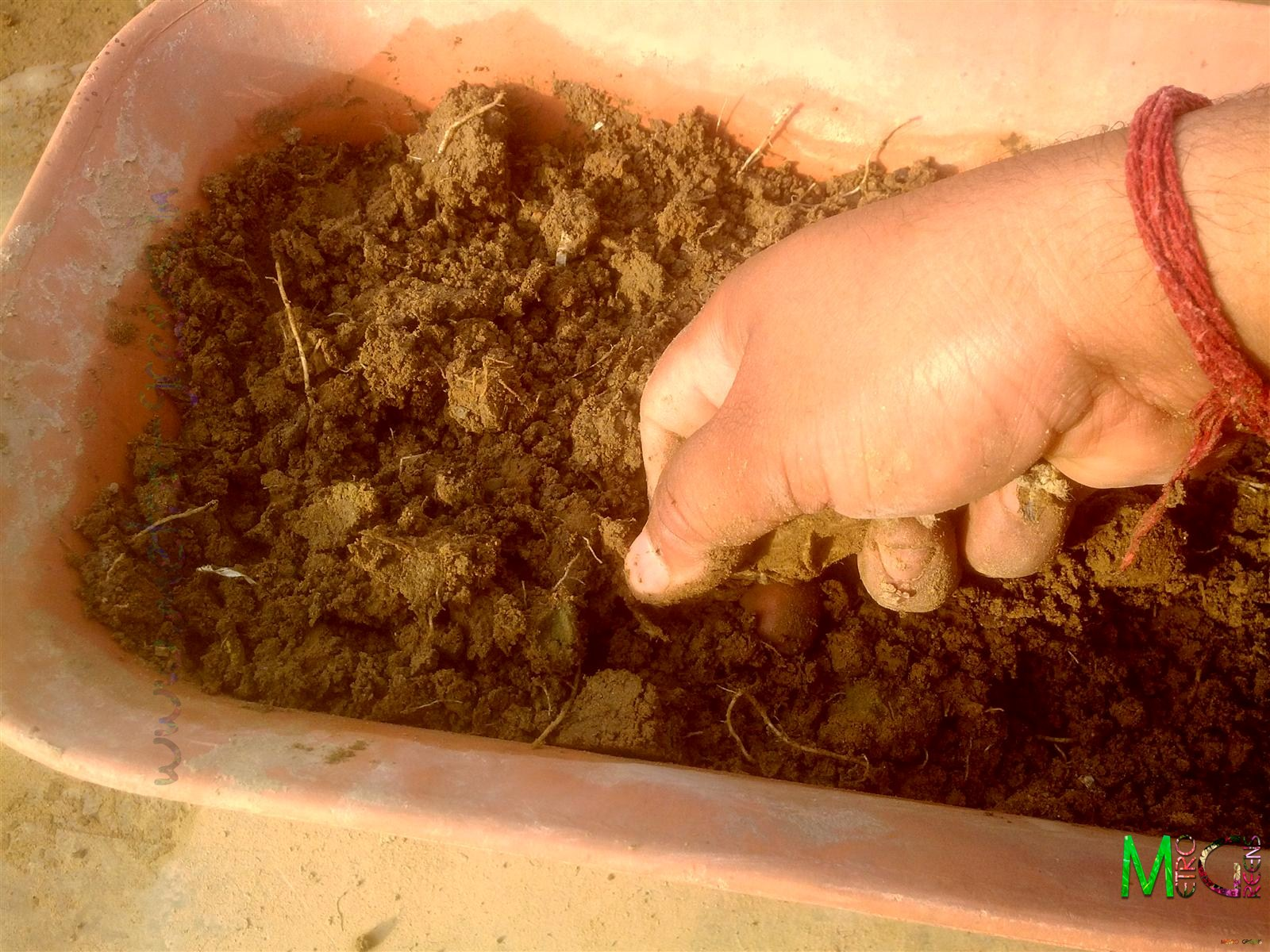 Metro Greens: Preparing Soil