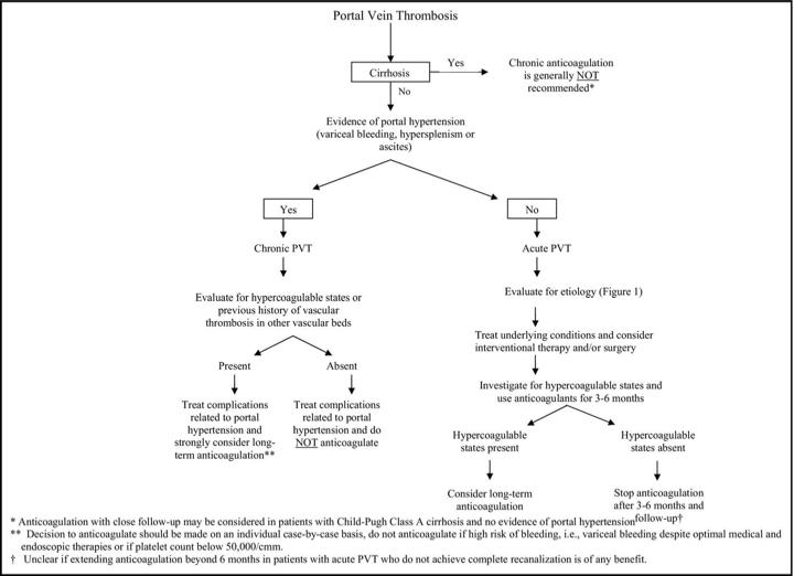 分類 食道 静脈 瘤
