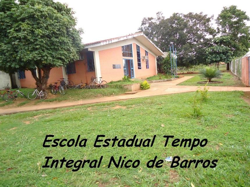 Escola Estadual Tempo Integral Nico de Barros