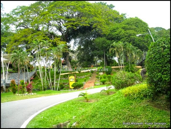 Green Kuala Selangor