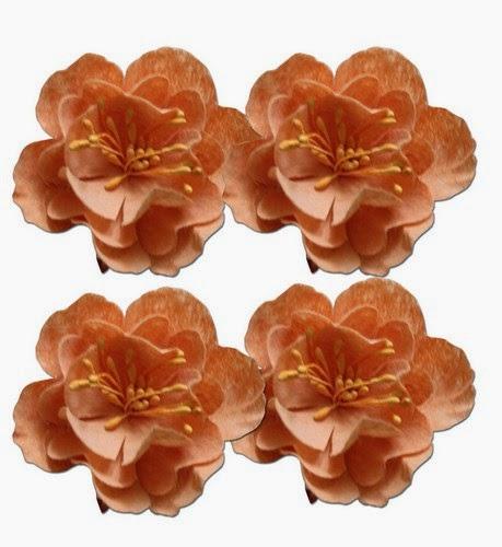 http://kolorowyjarmark.pl/pl/p/Kwiatki-dekoracyjne-5cm-Light-Peach/1165