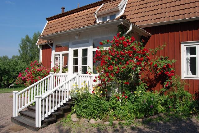 Ärligt och härligt om trädgård och natur -: Inspiration från ...
