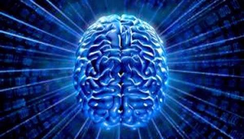 olahraga otak