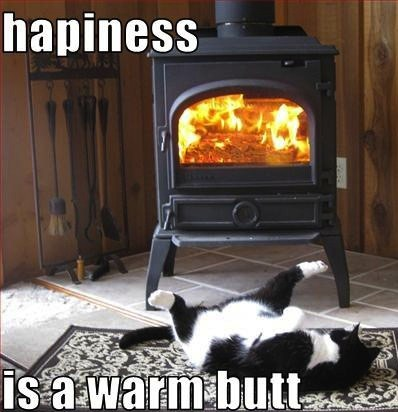 Kitty - Happiness Is A Warm Butt