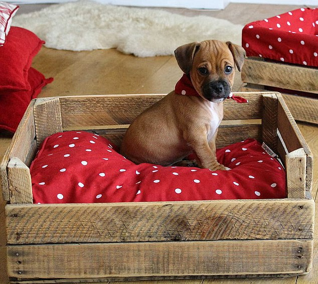 villapets 864419. Black Bedroom Furniture Sets. Home Design Ideas