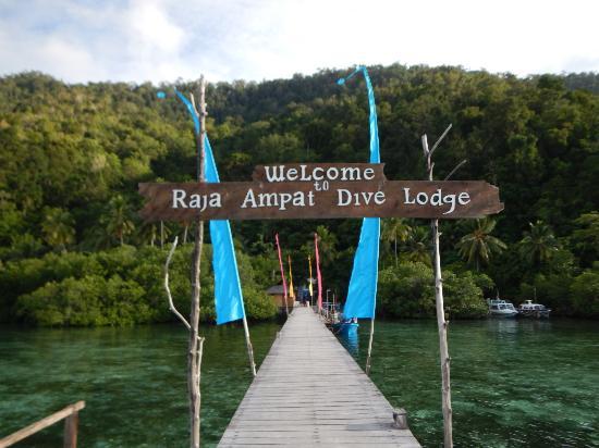 http://www.jelajahhemat.com/2015/06/raja-ampat-dive-lodge-4d3n.html