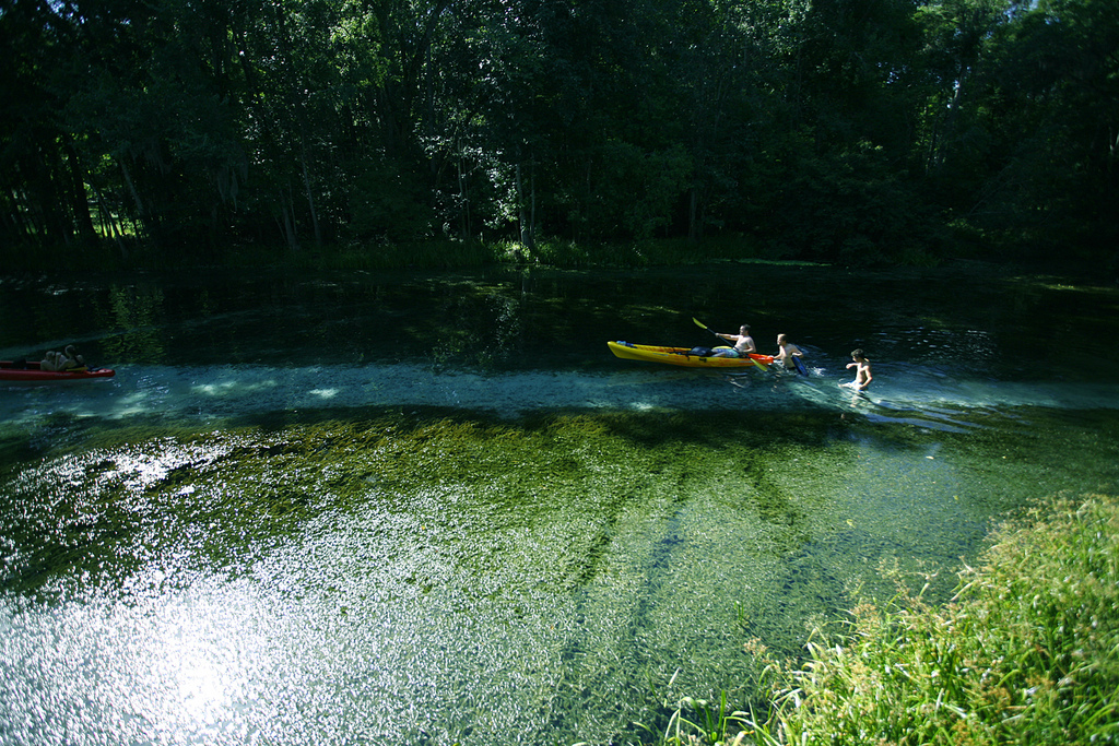 Floridiana: A Trip to Blue Springs on the Santa Fe River
