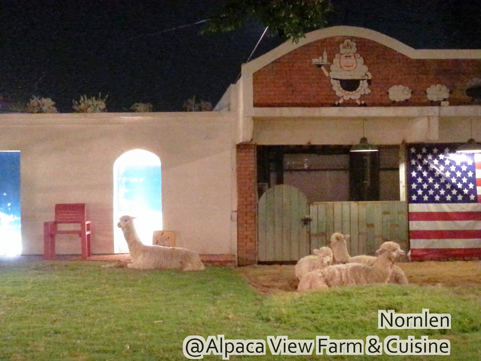 alpaca view farm cuisine