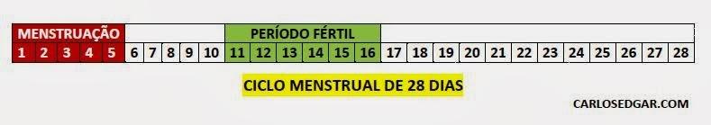 Ciclo menstrual de 28 dias, período fértil.