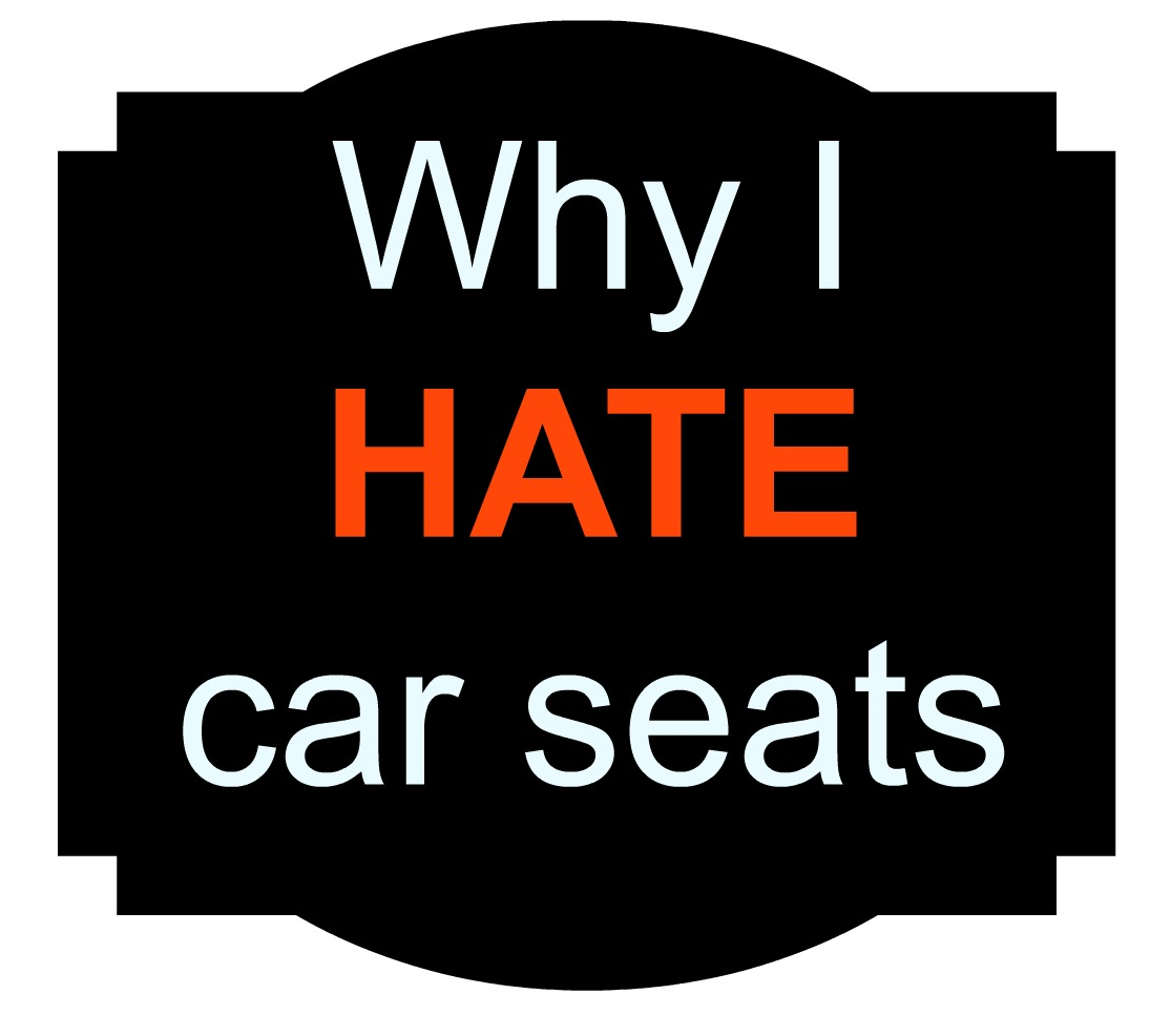 Not Quite Poppins: Why I hate car seats