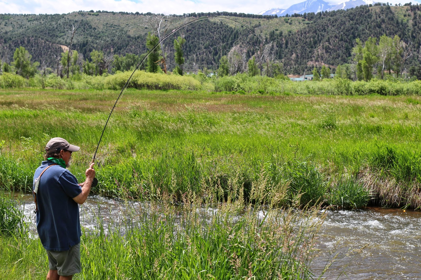 Fly+Fish+for+brown+trout+in+Colorado+with+Jay+Scott+Outdoors+2.JPG