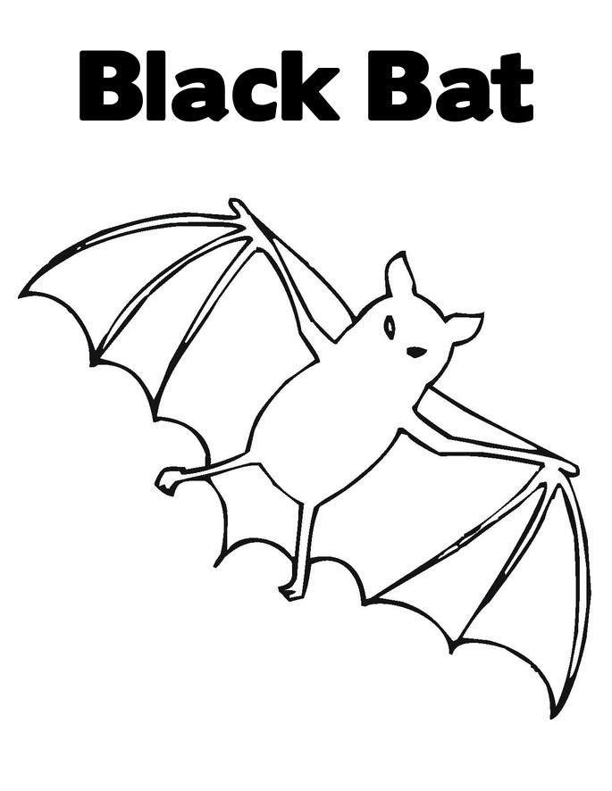 bat color pages - wild animal bat coloring pages free to print