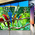 Apple trekt OLED expert aan