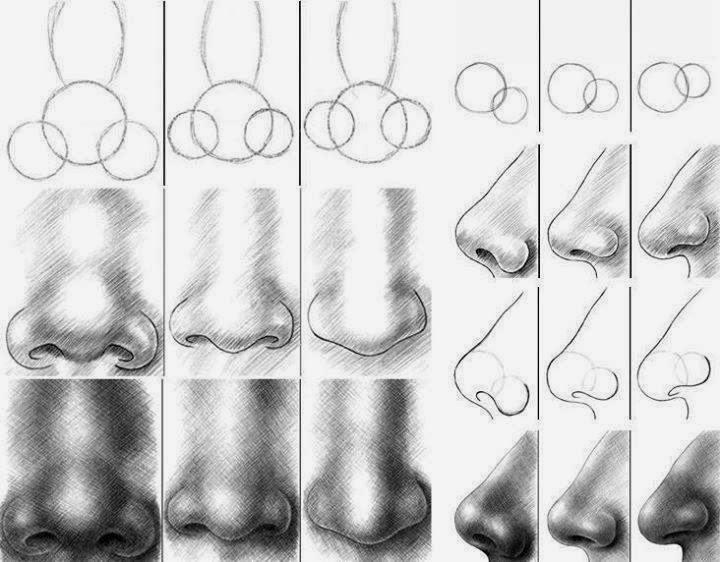 El arte de Arantxa: Como dibujar distintos tipos de narices de ...