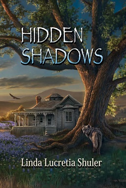 hidden shadows cover