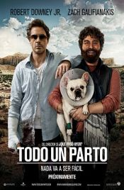 Todo un Parto (2010) Online Latino