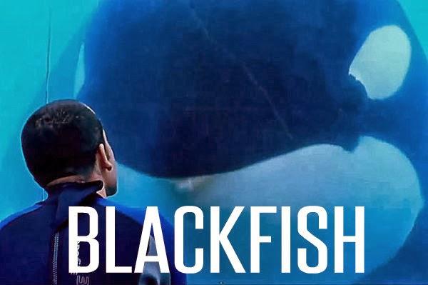blackfish - photo #21