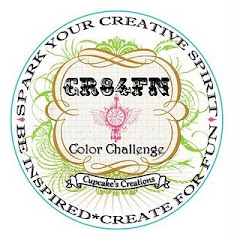 CR84FN- Color Challenge