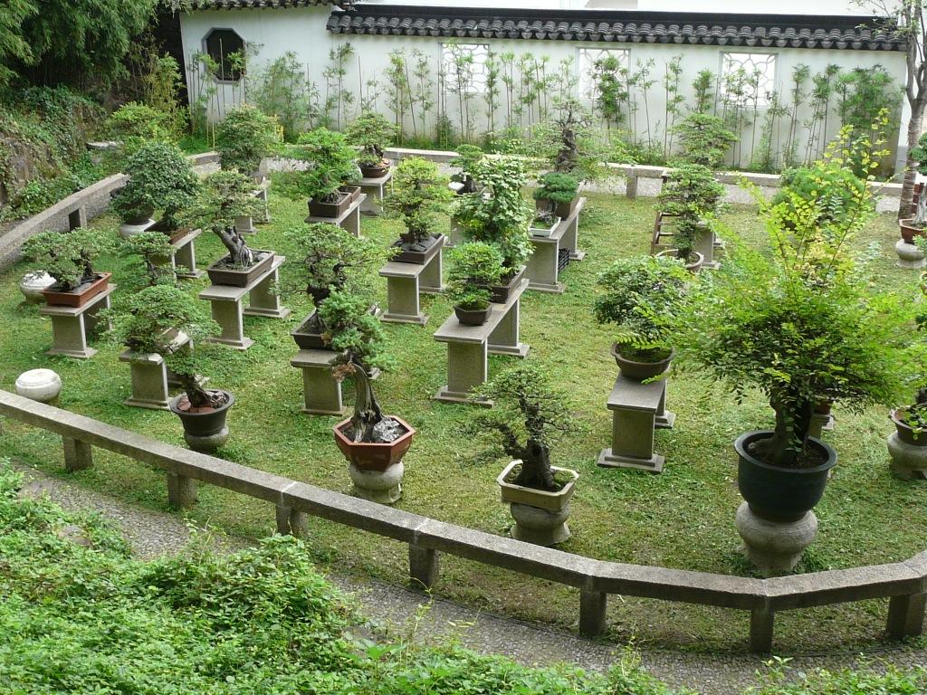 La casa china for Jardin de china