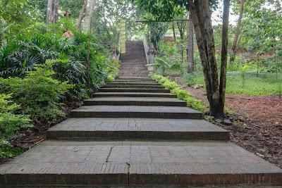 Stairs Wat Umong