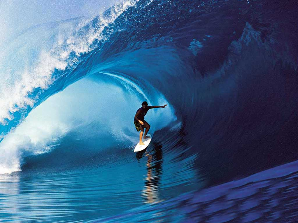 Giant wave forex