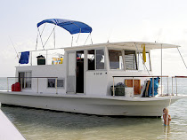 33' Chris Craft house boat